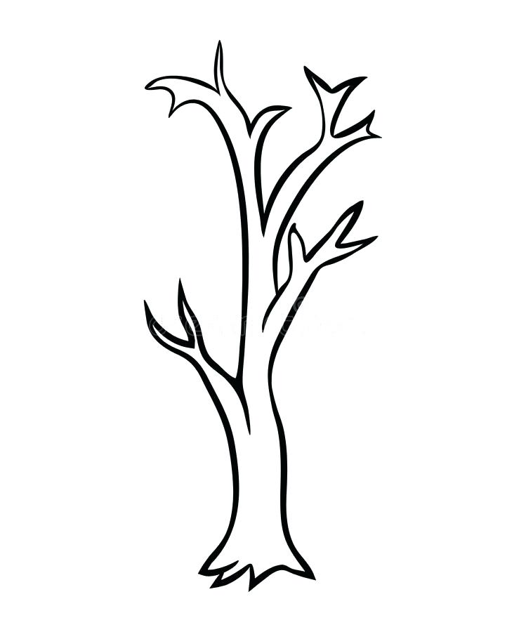 749x900 Leafless Tree Coloring Page Bare Tree Coloring Page Bare Tree