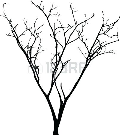 403x450 Bare Tree Black And White Free Download Best Bare Tree Bare Tree