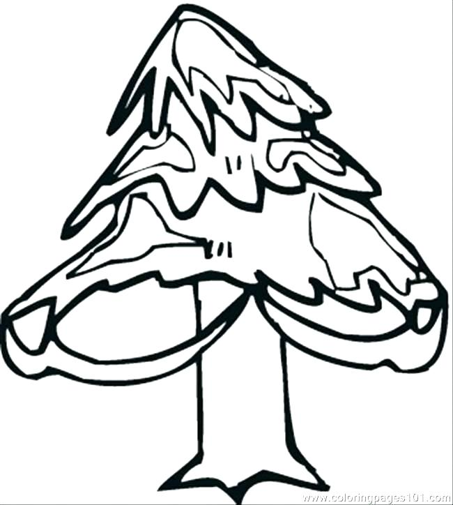 650x724 Outline Tree Outline Tree Bare Tree Coloring Page Pine Tree