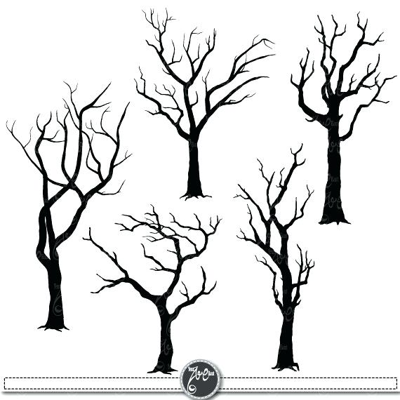570x570 Bare Tree Coloring Page Fall Tree Without Leaves Coloring Page