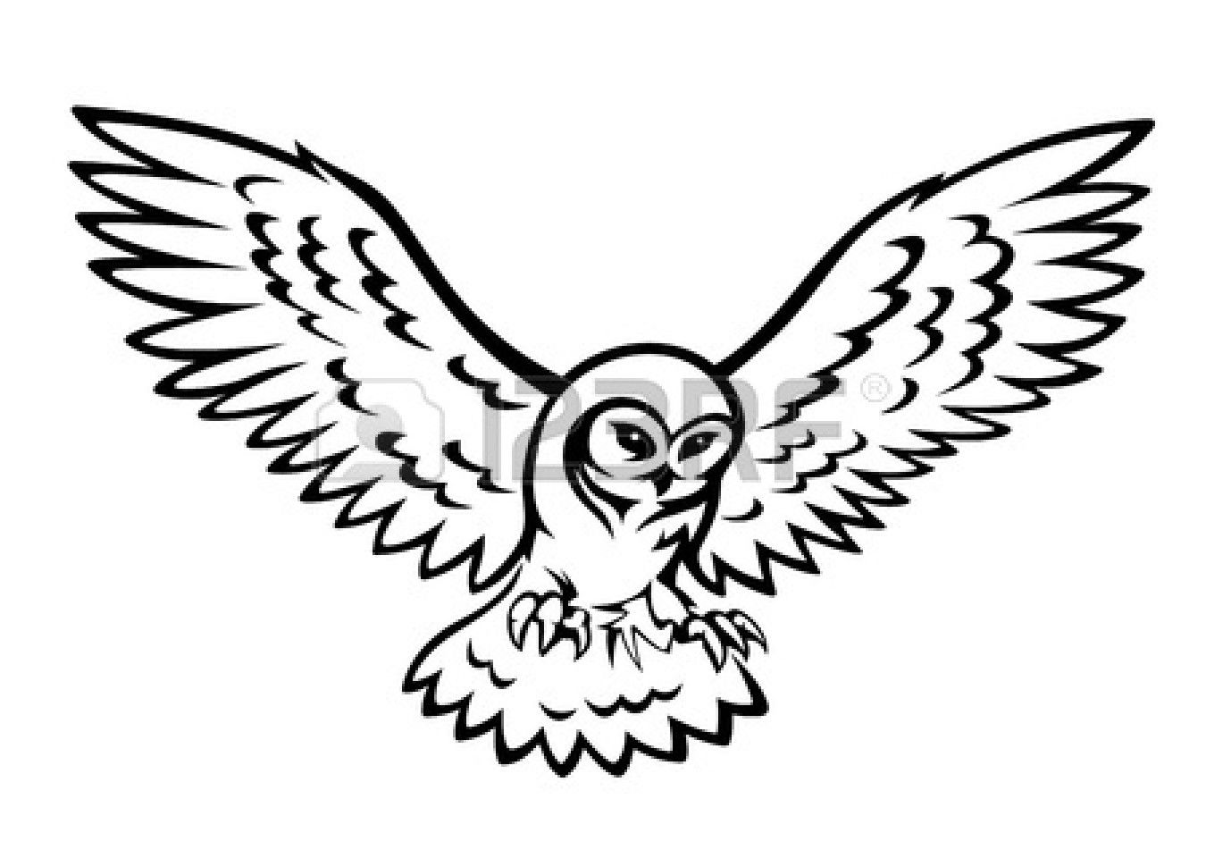 1350x960 Owl Flying Drawing Simple