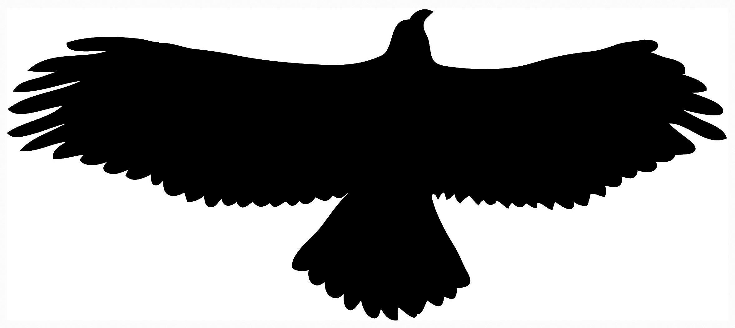 2353x1049 Eagle Silhouette