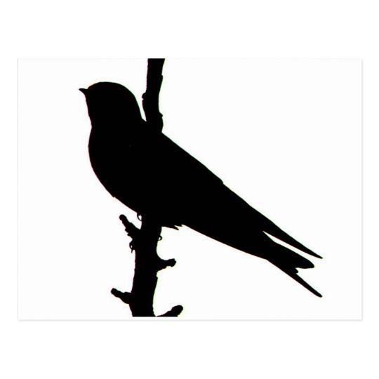 540x540 Barn Swallow Silhouette Postcard