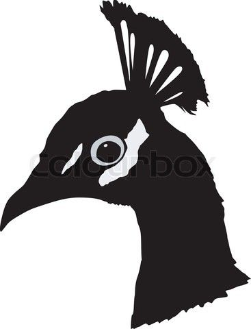 367x480 Silhouette Of Peacock Stock Vector Siluety