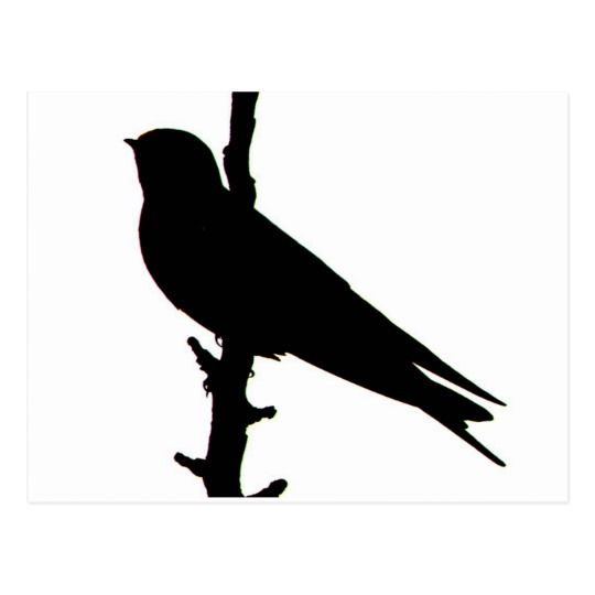 540x540 Barn Swallow Silhouette Postcard