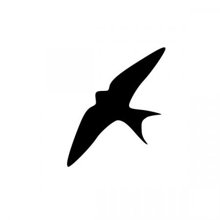 450x450 Barn Swallow