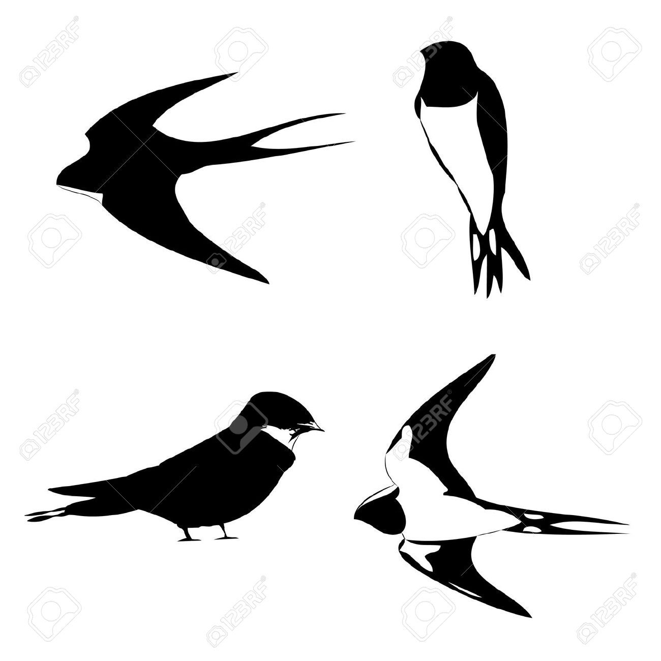 1300x1300 Images For Gt Swallow Tattoo Silhouette Personal Interest