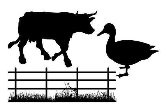 570x380 Farm Animal Silhouette Farm Animal Clipart Cow Horse Duck