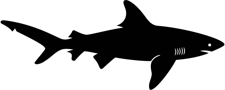 1075x430 Shark Fish Silhouette Wall Decal Wallmonkeys