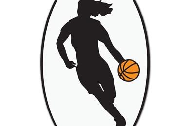 390x260 Girl Basketball Wallpapers Wallpapers