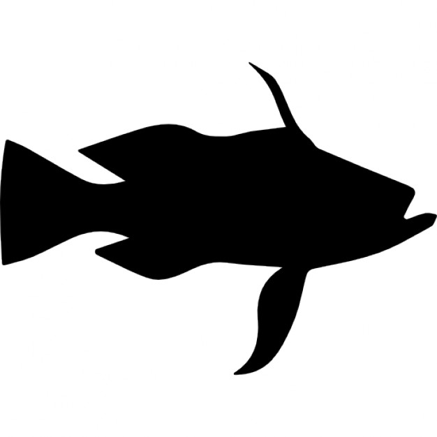 626x626 Longtail Bass Fish Shape Icons Free Download