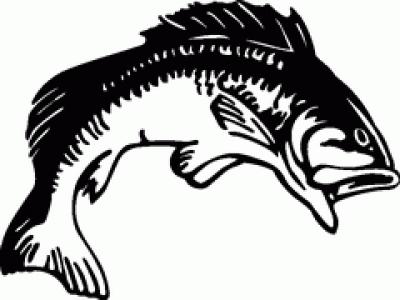 400x300 Bass Fish Silhouette