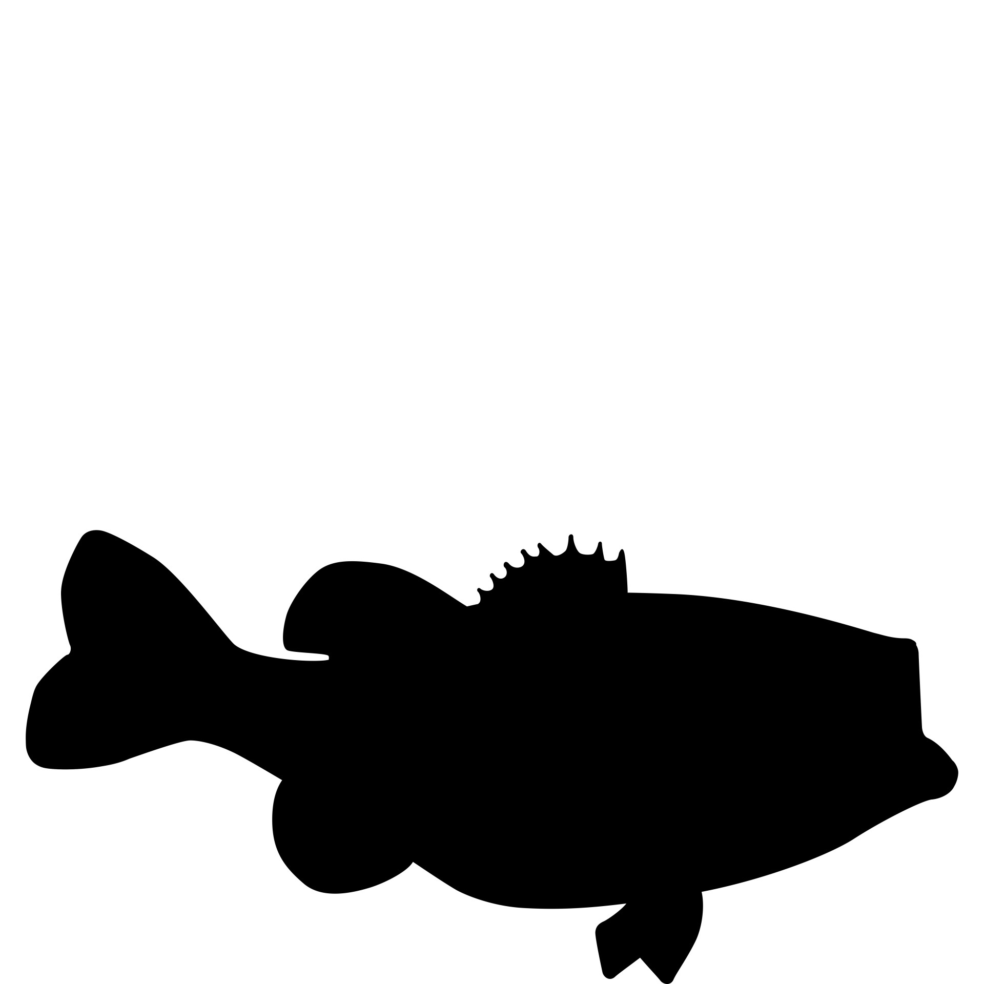 1920x1920 Sea Bass Free Stock Photo