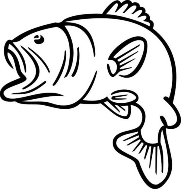 bass fish silhouette clipart at getdrawings com free for personal rh getdrawings com bass fish clipart black and white bass fish clipart free