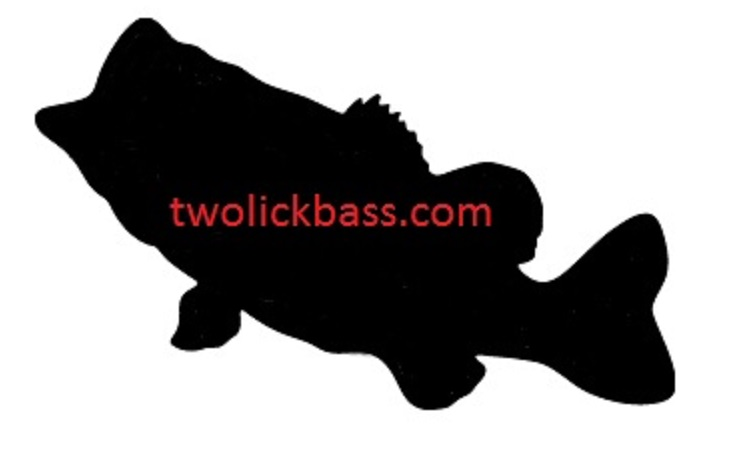 Bass Silhouette Images