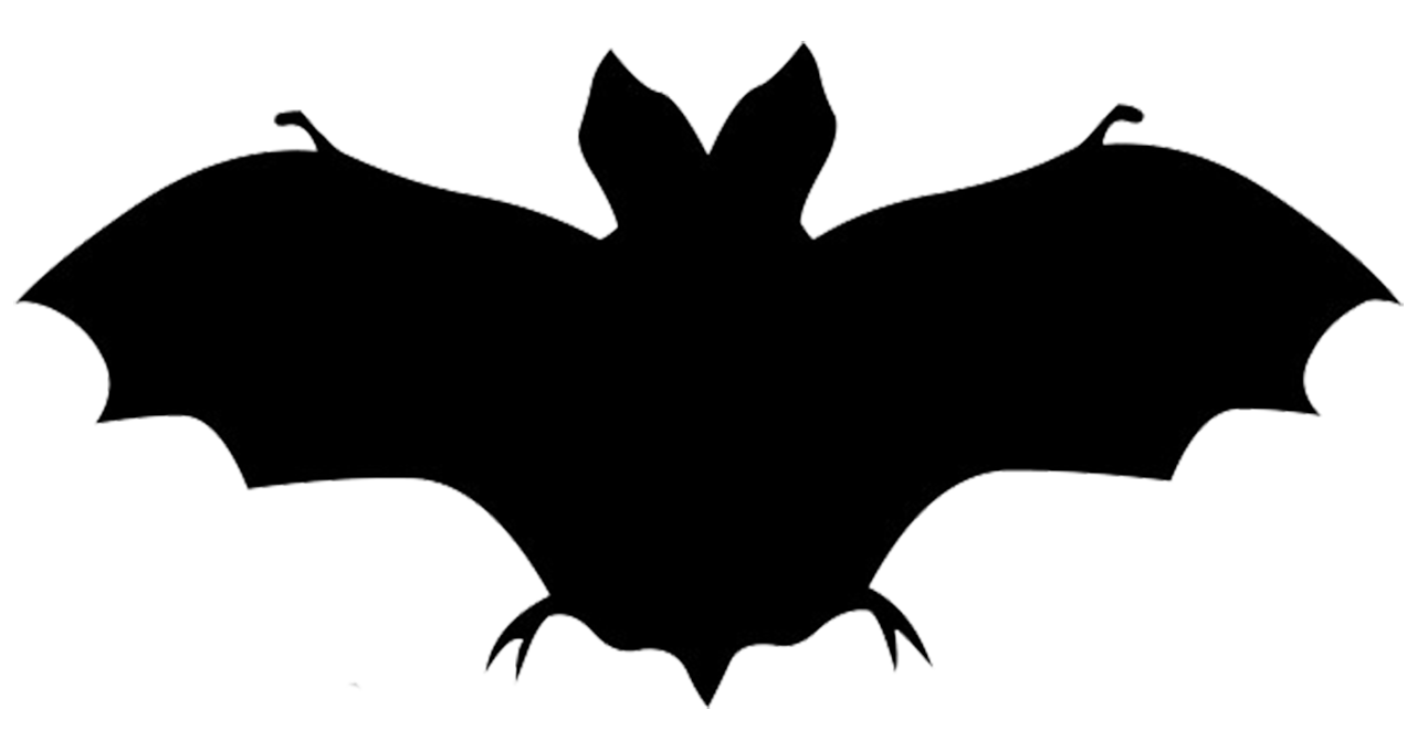 1292x681 Bat Silhouette. Even If You Only Rarely See Them This Islso