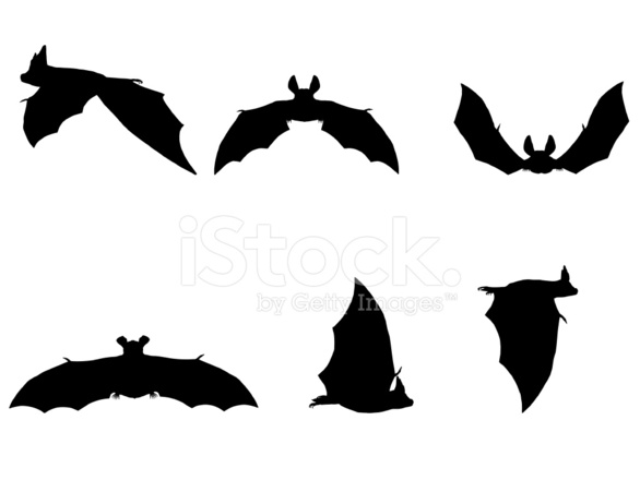 586x440 Bat Silhouette Collection Stock Vector
