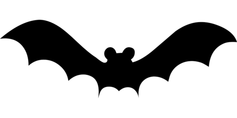 480x240 Flying Bat Template Free Printable Papercraft Templates
