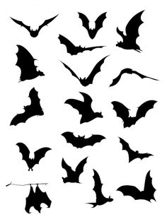 236x317 Printable Halloween Silhouettes Vector Set Of Halloween Bat