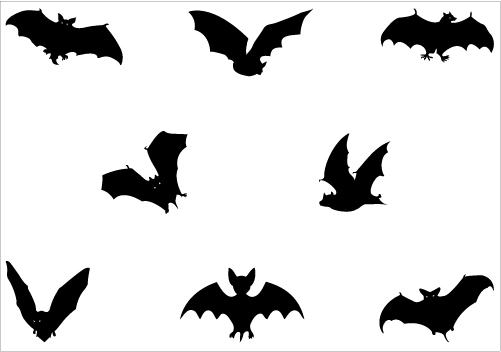 501x352 Bat Silhouette Vector
