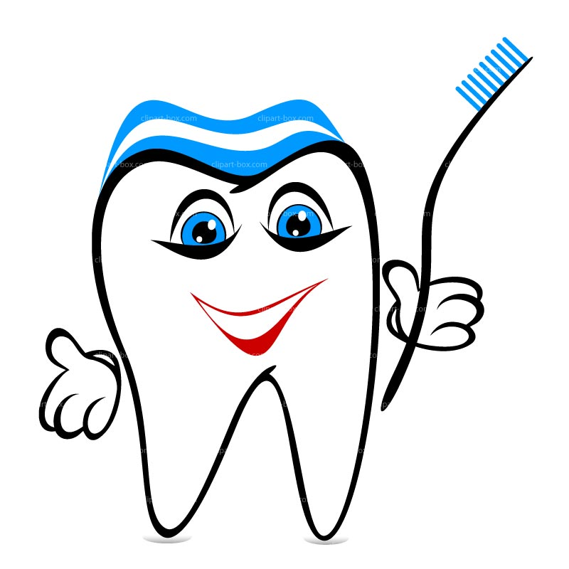 800x800 55 Free Tooth Clipart