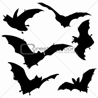 340x340 Image 2349764 Bat Silhouettes From Crestock Stock Photos