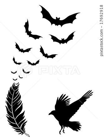 333x450 Raven Feather With Flying Halloween Bats, Vector