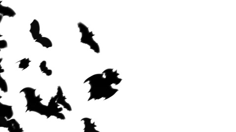 480x268 Video Group Of Bat Silhouettes Flying Across The Screen ~