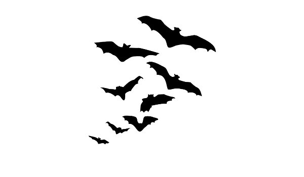 600x350 Silhouette Of Flock Flying Bats Halloween Decor