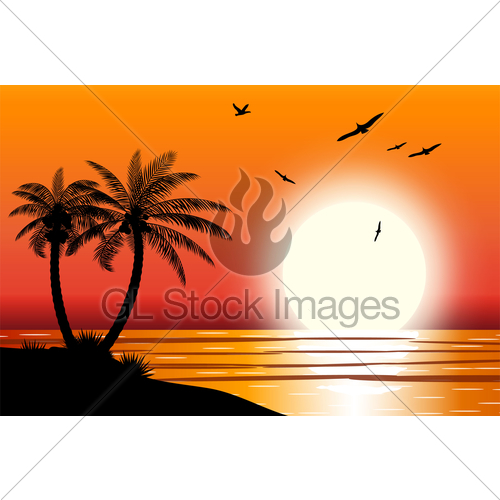 500x500 Silhouette Of Palm Tree On Beach. Gl Stock Images