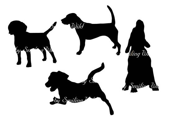 570x403 Beagle Svg Dog Breed Silhouette Clipart Vector Graphic Printable