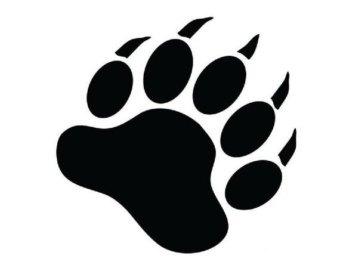 340x270 Bear Paw Logo