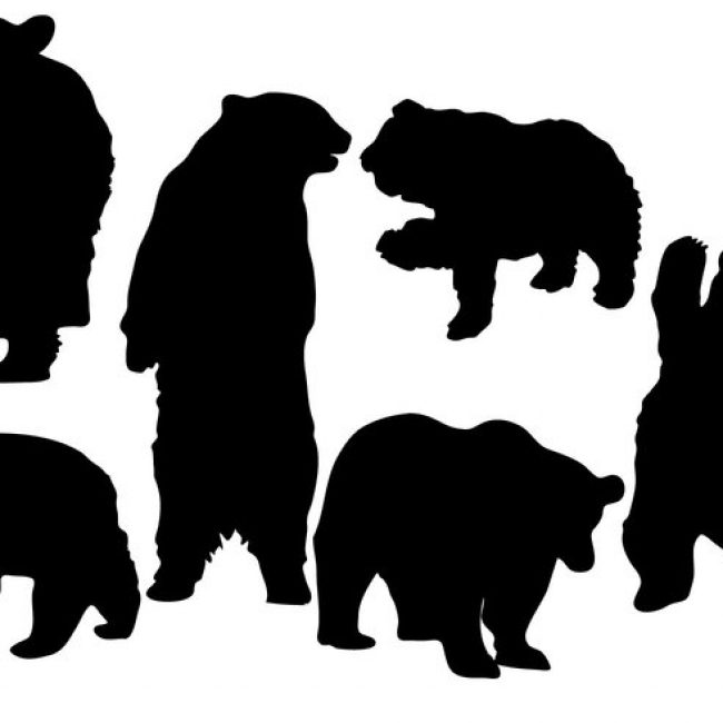 650x650 Free Vector Free Bear Silhouette Vector