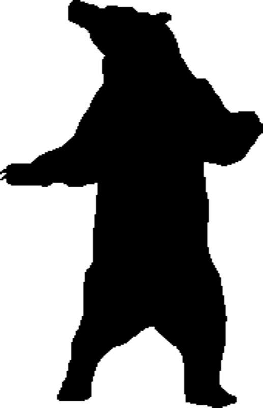 517x800 Standing Bear G1