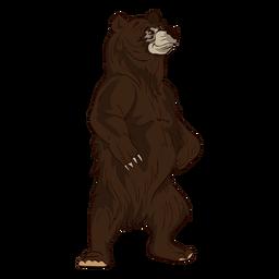 256x256 Bear Silhouette