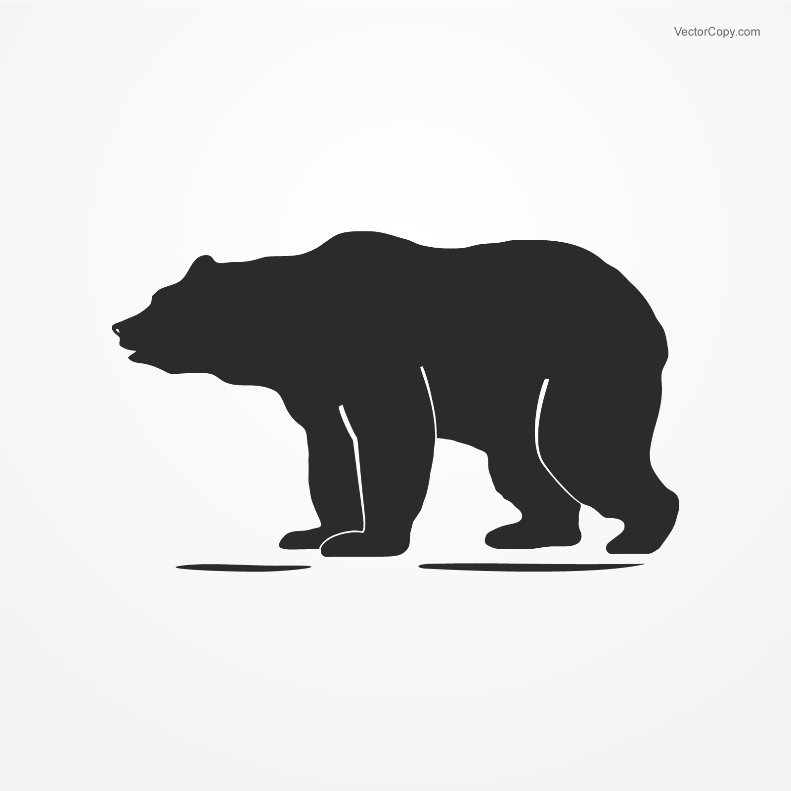 1600x1600 Bear, Download Free Vector, By Free Vector