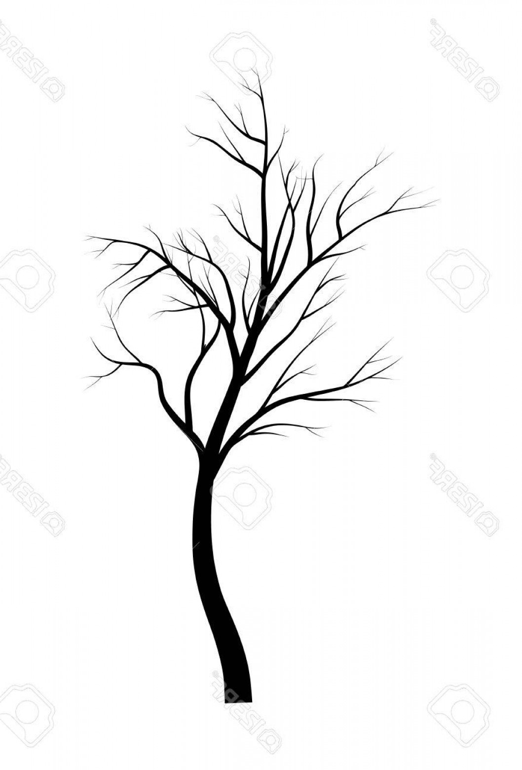 1058x1560 Silhouette Vector Tree Branch Art SHOPATCLOTH