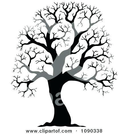 450x470 Beautiful Leafless Tree Coloring Page Online Bare Outline Pages