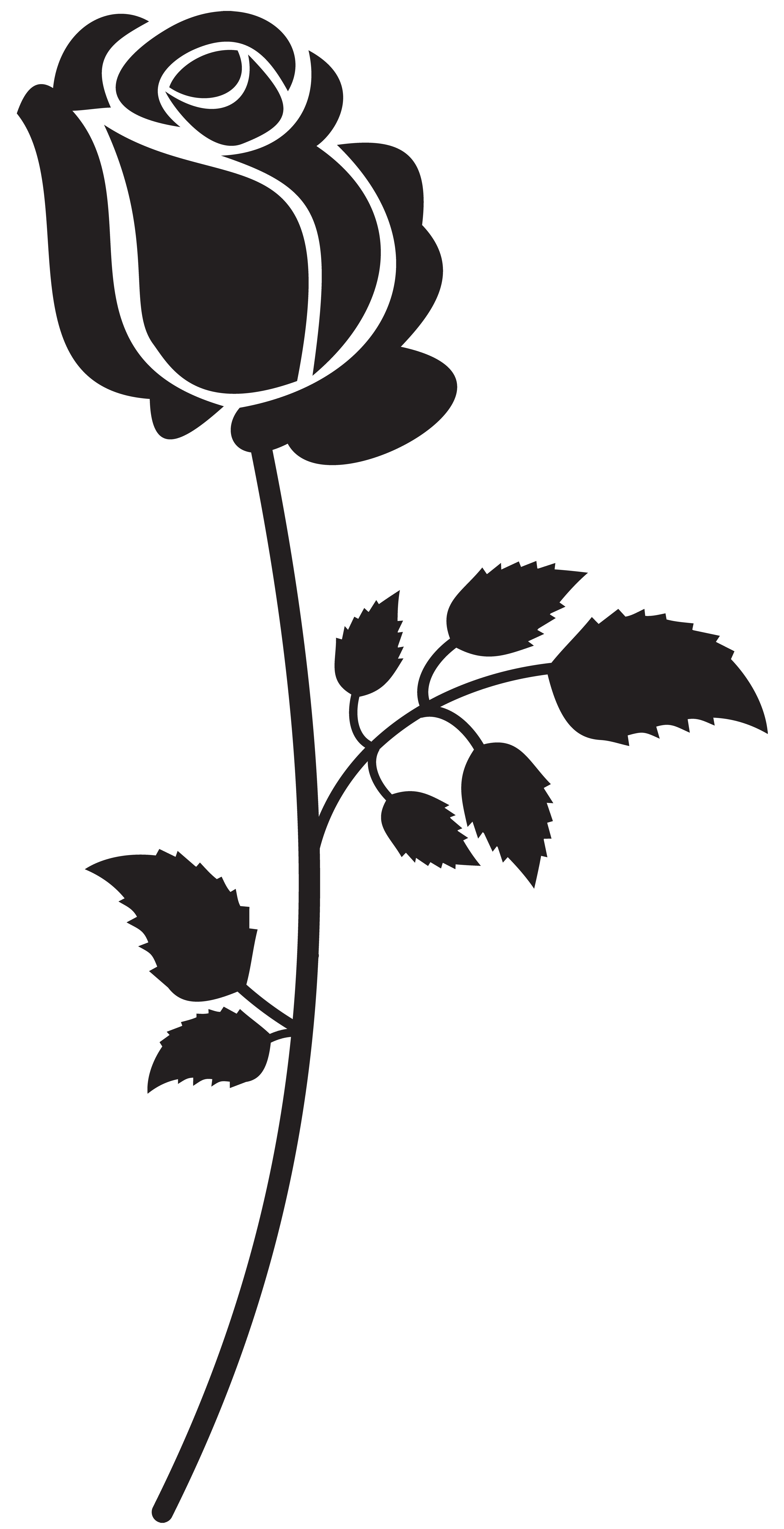 3591x7000 Beauty And The Beast Rose Silhouette Free Clipart