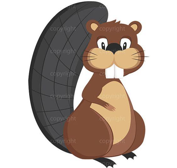 564x536 Animal Clipart Beavers