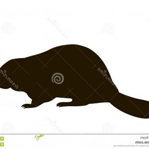 300x300 Stock Illustration Silhouette Sitting Beaver Vector Image
