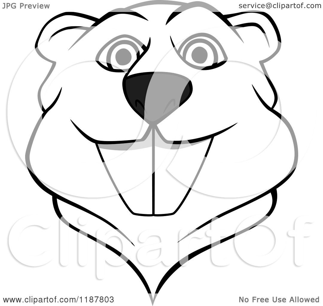 1080x1024 Clipart Of A Happy Black And White Beaver Mascot Face
