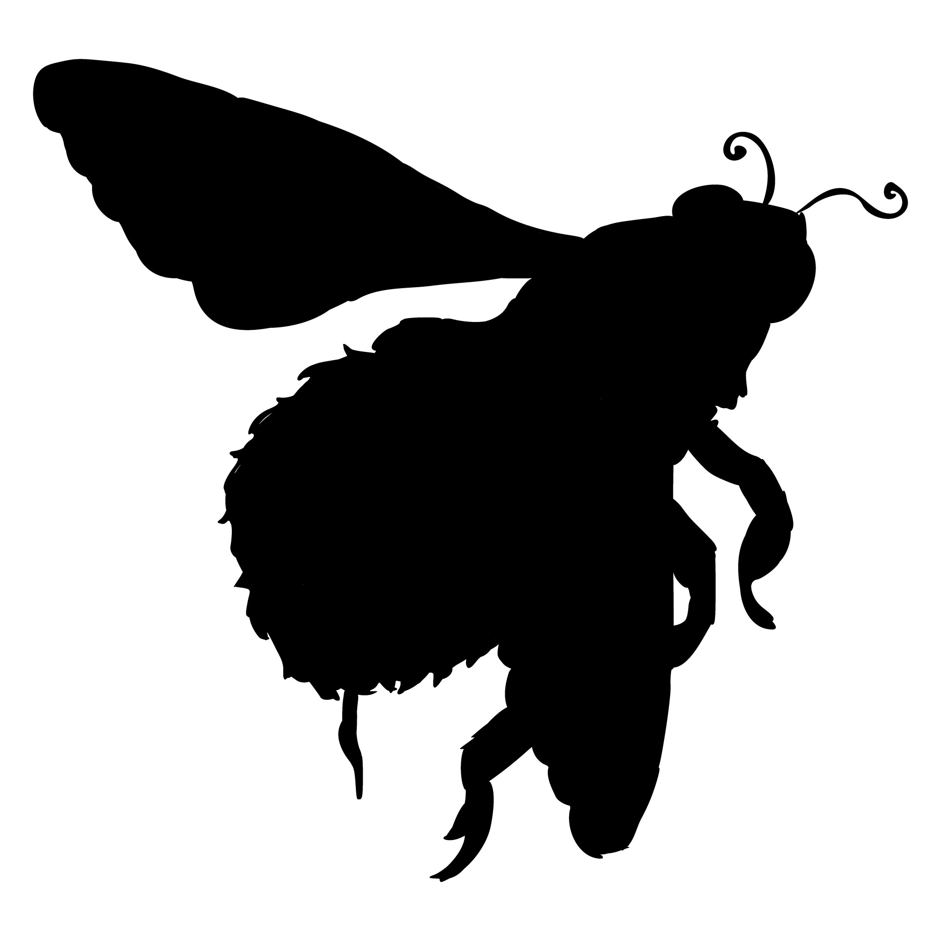 1920x1920 Silhouette Of A Bumble Bee Free Stock Photo