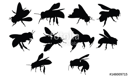 500x300 Bee Silhouette Vector Illustration Stock Image And Royalty Free