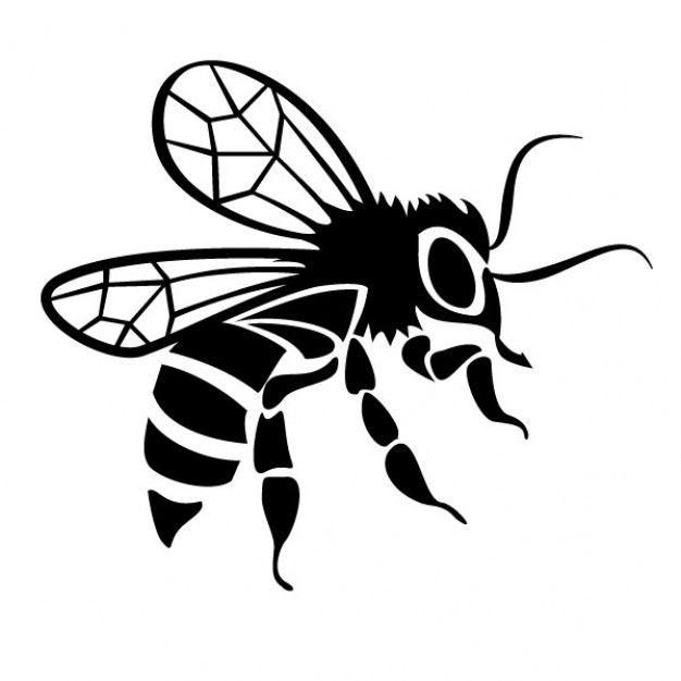 626x626 Black Bee Drawing Vector Image Drawings Bee