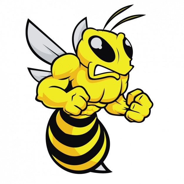 626x626 Angry Bee Design Vector Free Download
