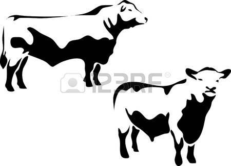 450x325 Beef Clipart Angus Cow