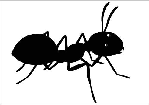 501x352 Awesome Ant Silhouette Vector Clipart Download Ant Silhouette