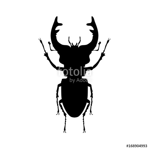 500x500 Stag Beetle Insect Black Silhouette Animal Stock Image