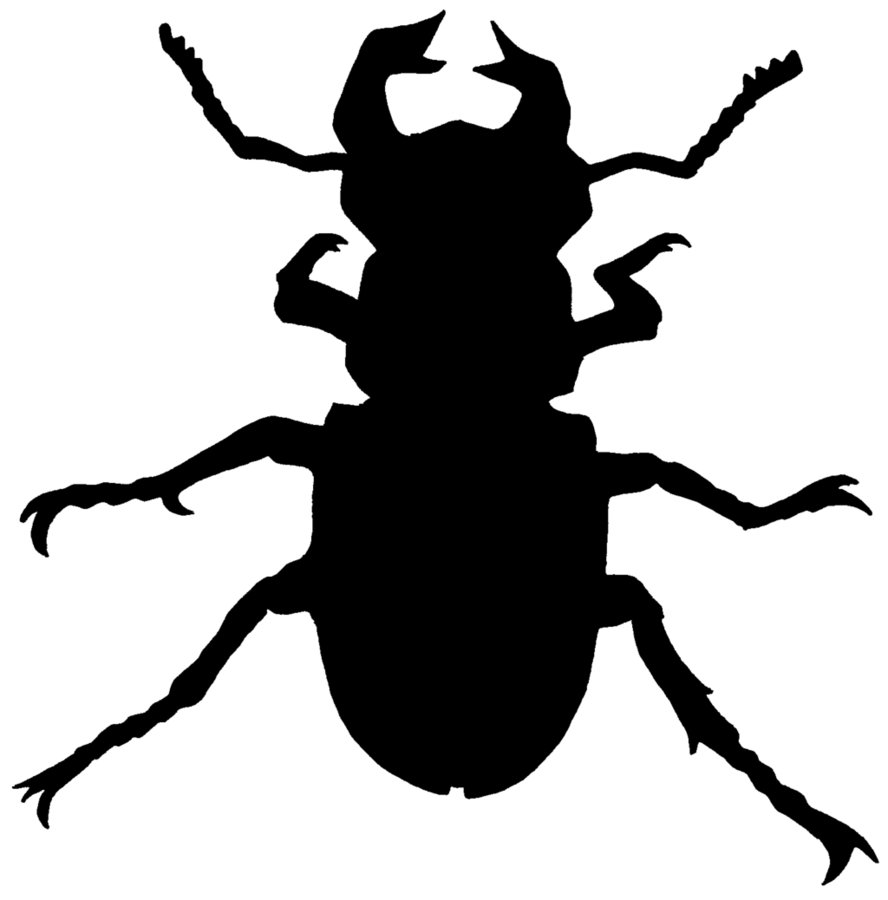 888x900 Beetle Silhouette By Zucco1